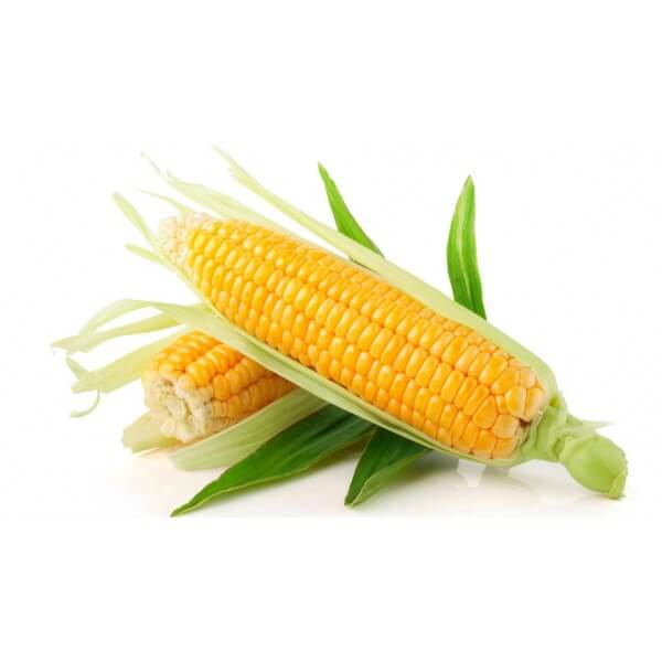 Corn Doug