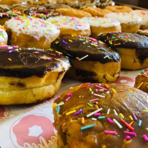 Special Donut Bite