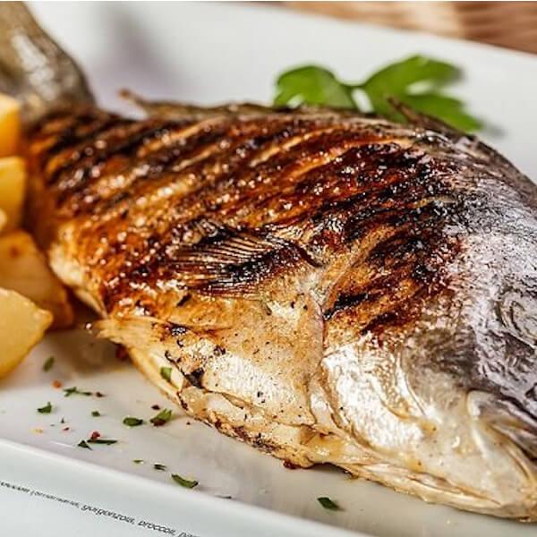 سمك دنيس