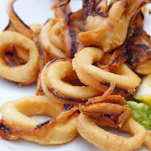 Calamari fish meal