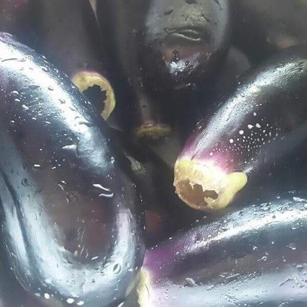 Aubergine  (uncooked ) - kilo